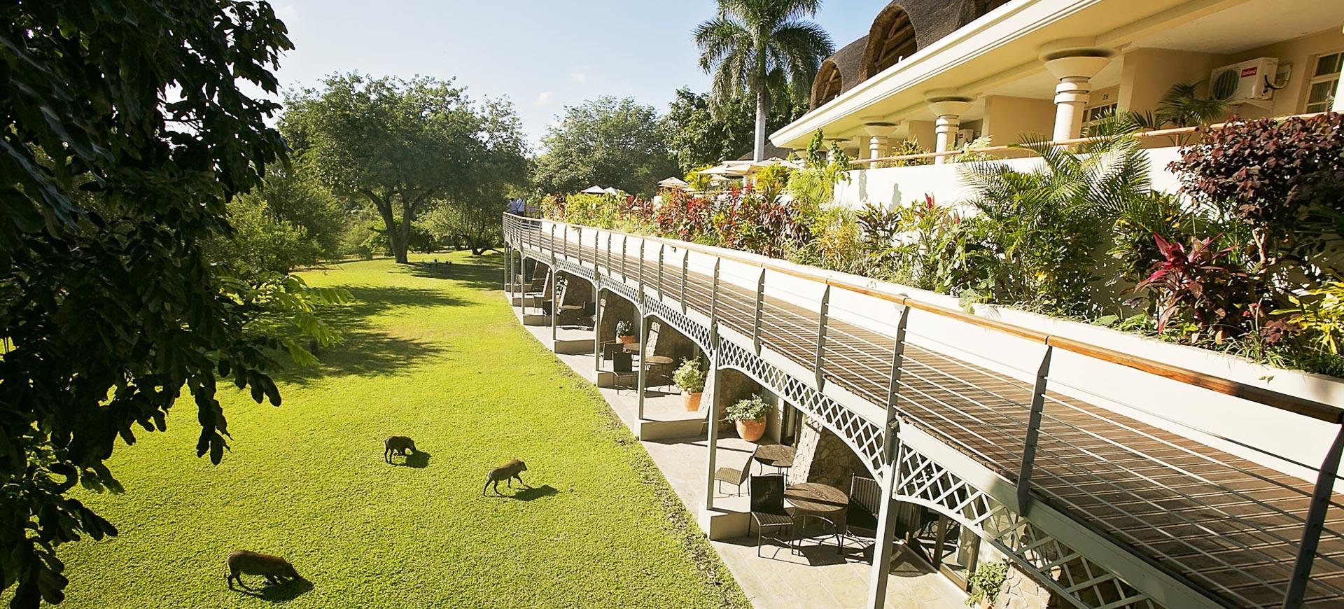 Ilala Lodge Lawns
