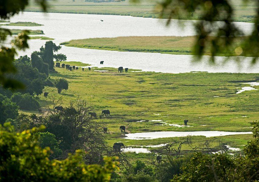 Chobe Chilwero