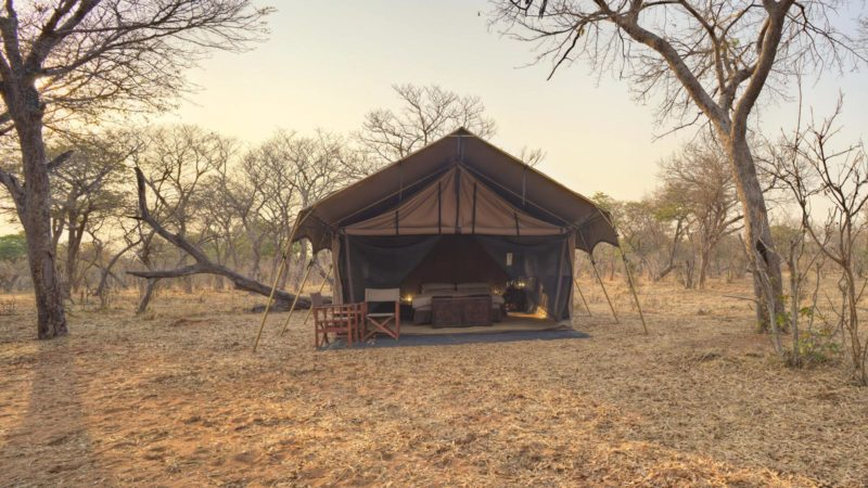 Chobe Under Canvas Room