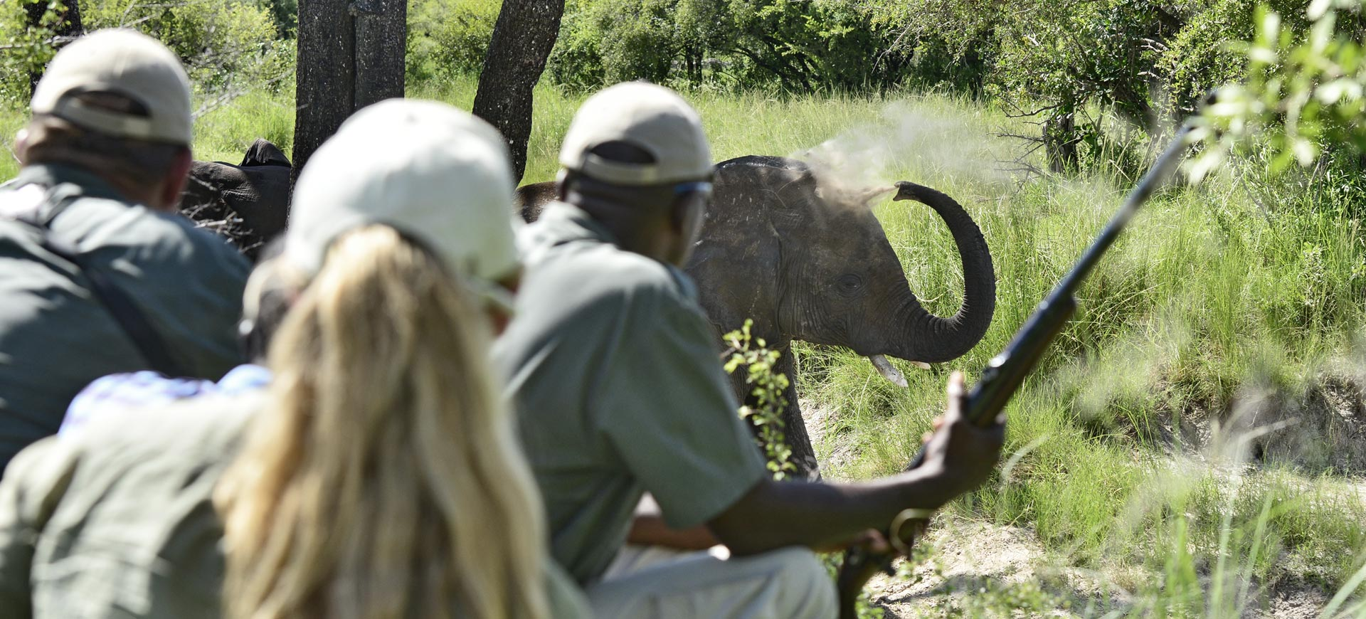 Conservation Safari Zambezi