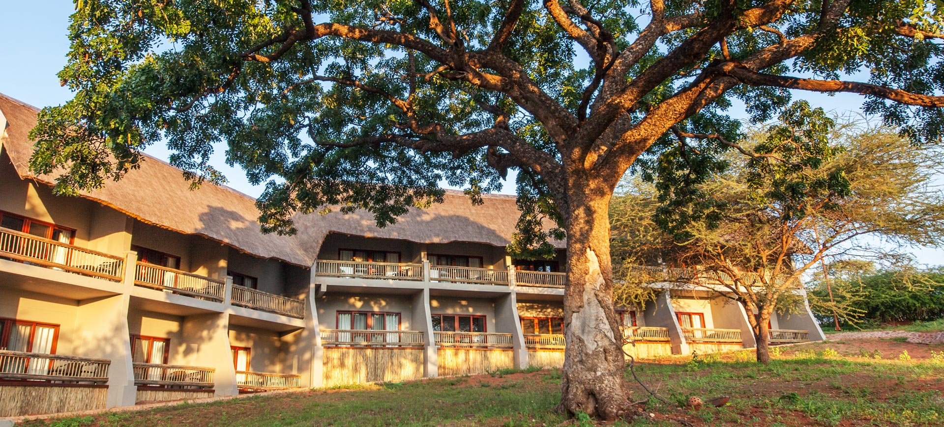 Lodge Chobe Bush