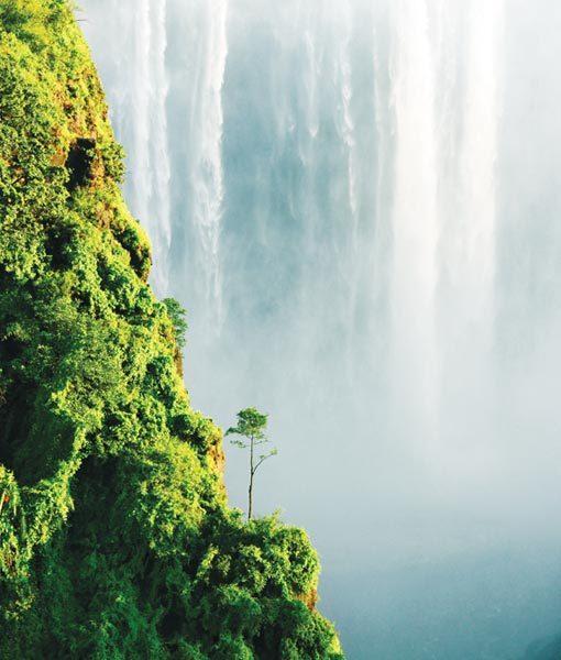 Ecotourism Victoria Falls Safari