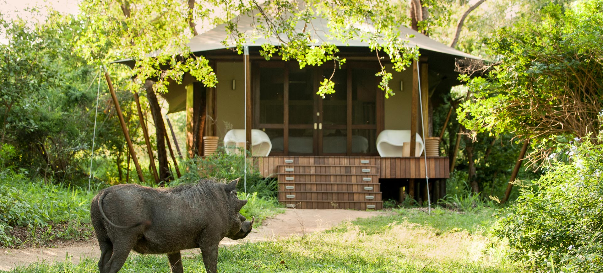 Camp Ngala Kruger National Park