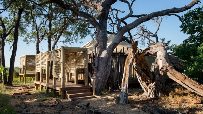 Camp Nxabega Okavango