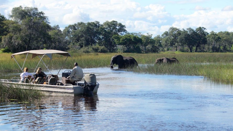 Delta Okavango River Cruising