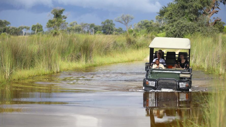 Game Drive At Okavango Delta