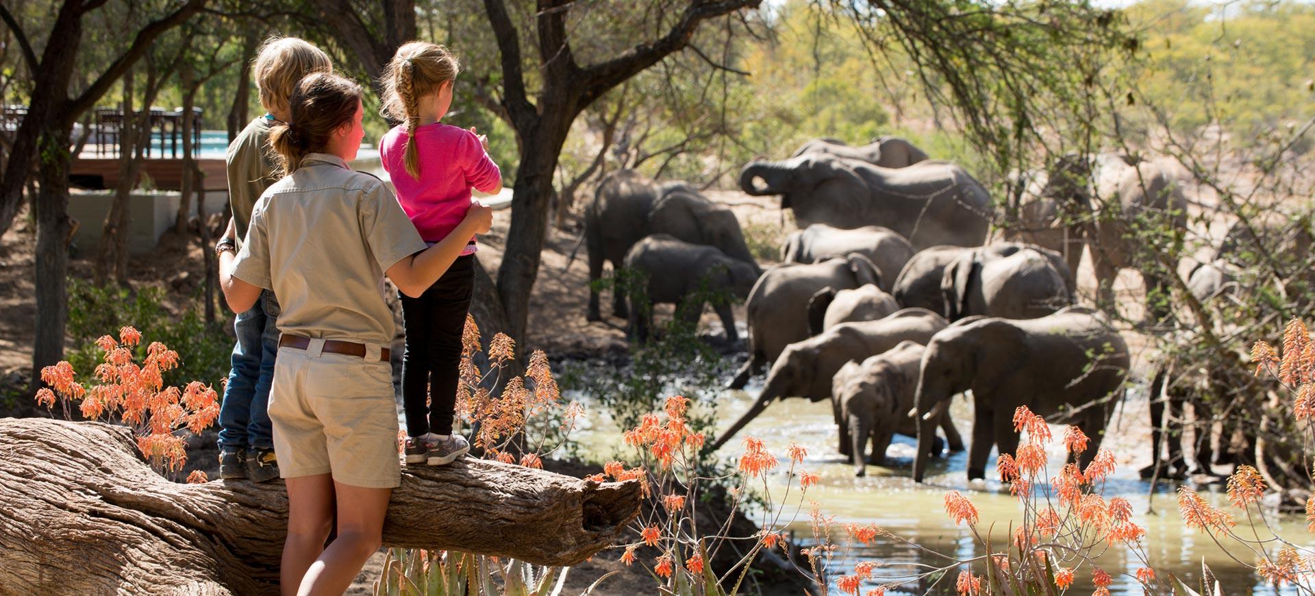 Kruger Ngala Lodge