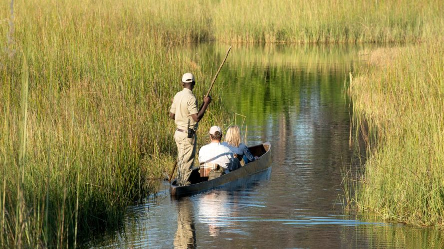 Mokoro Experience Okavango