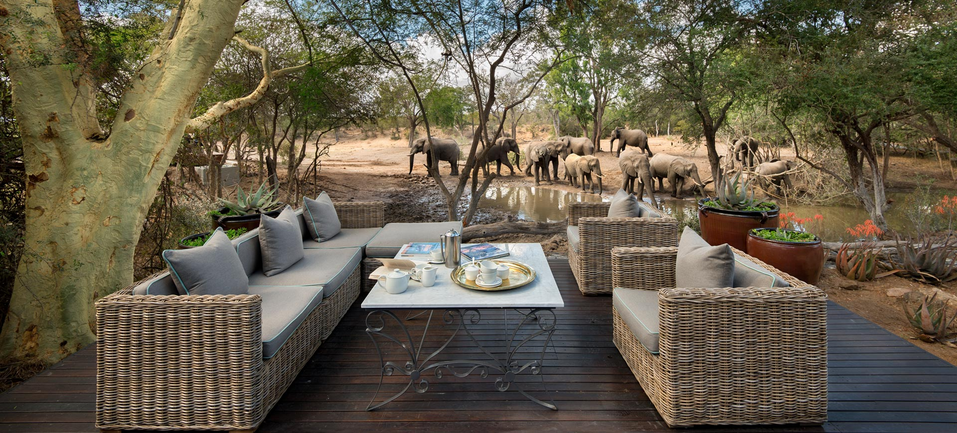 Ngala Lodge Kruger National Park