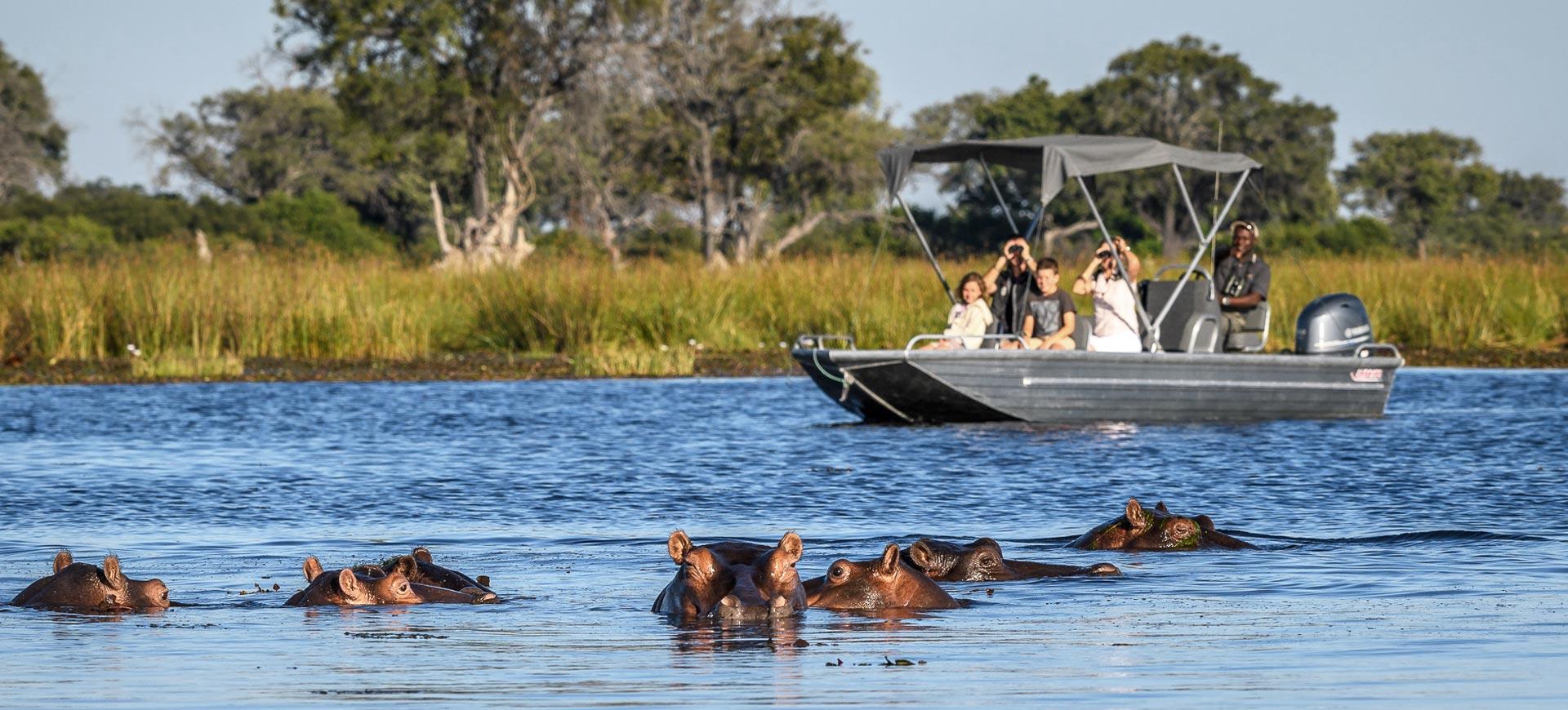 Okavango Delta River Cruises