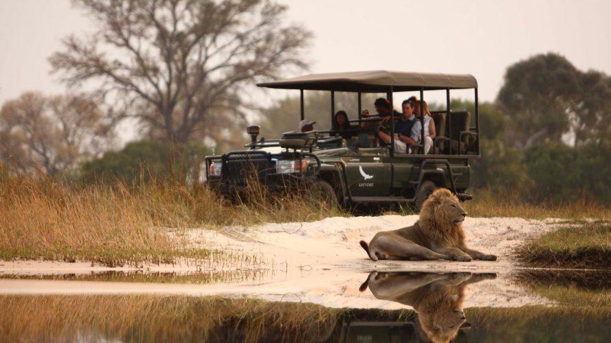 Okavango Game Drive