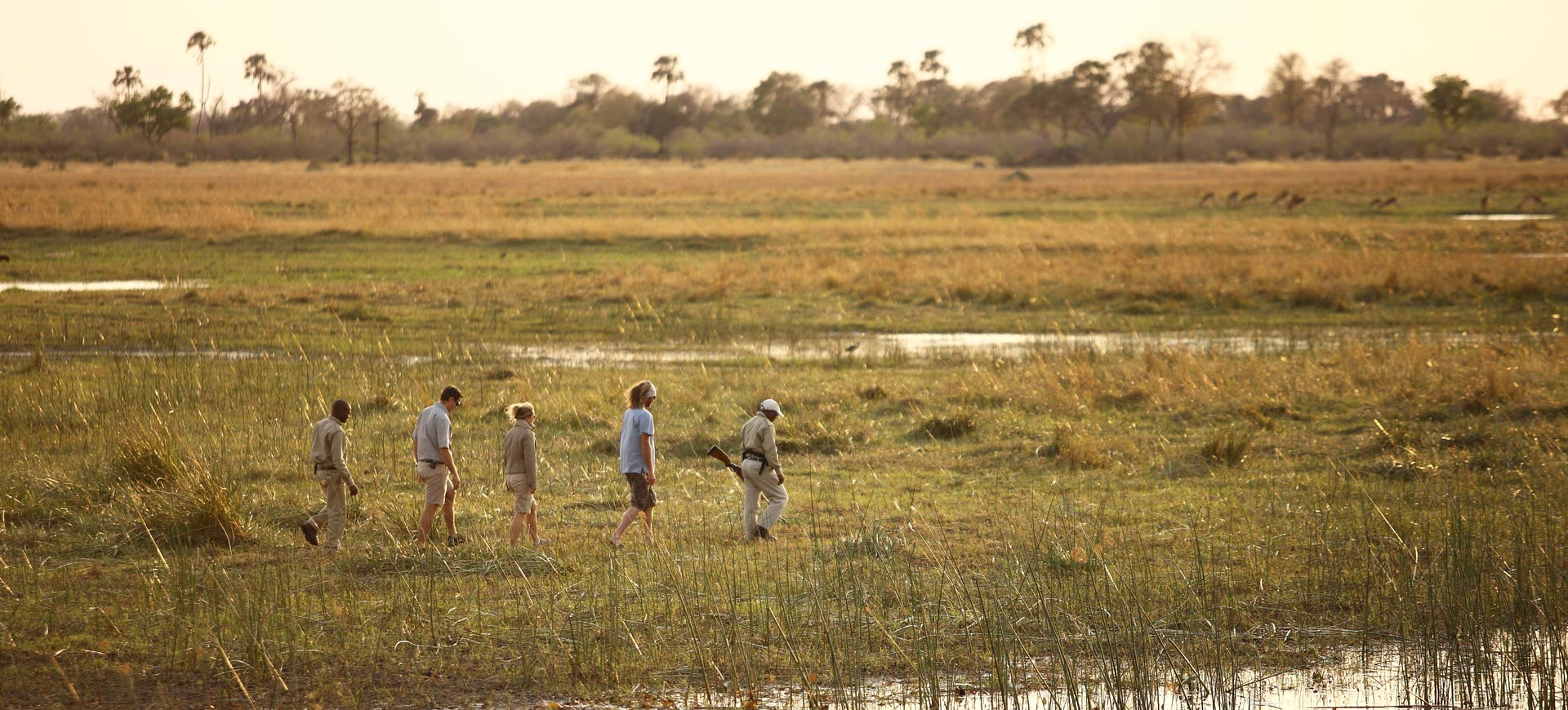 Okavango Walk Safari