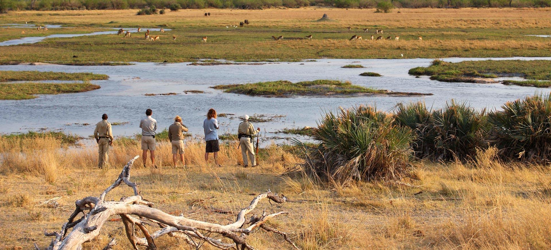 Okavango Walking Safari