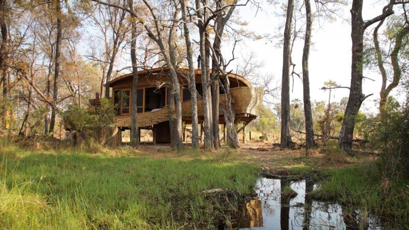 Sandibe Okavango Delta Lodge Accommodation
