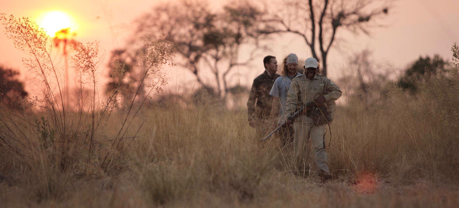 Walk Okavango Delta