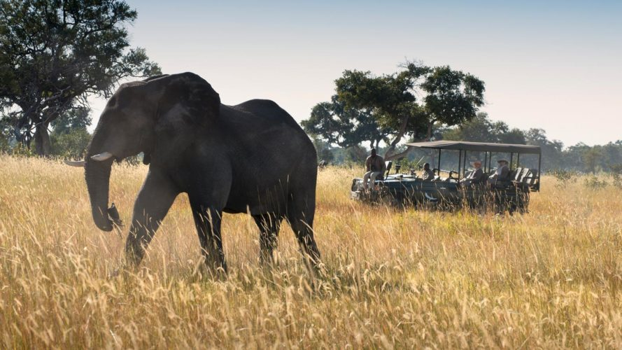 Xaranna Okavango Camp Game Drive