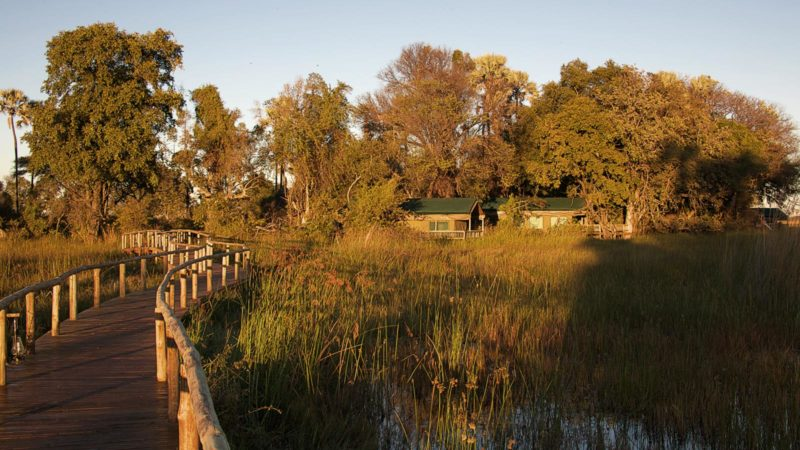 Accommodation Gunns Camp Okavango