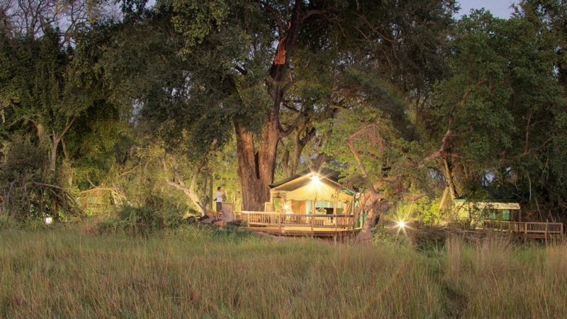 Accommodation Gunns Camp Okavango Delta