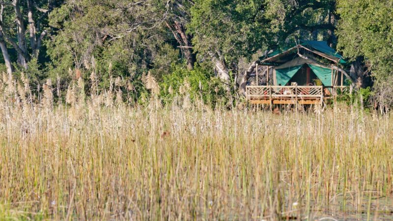 Eco Lodge Pom Pom Delta