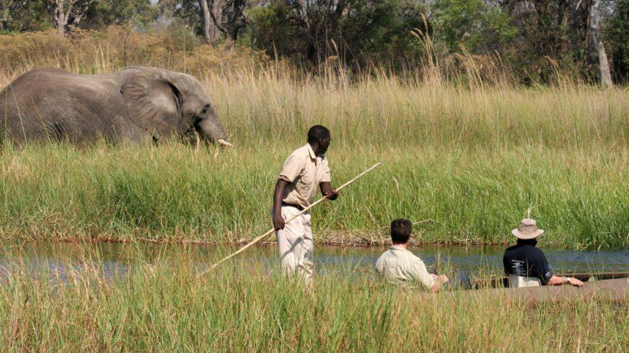 Gunns Camp Okavango