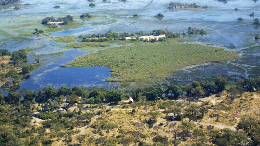 Okavango Camp Pom Pom
