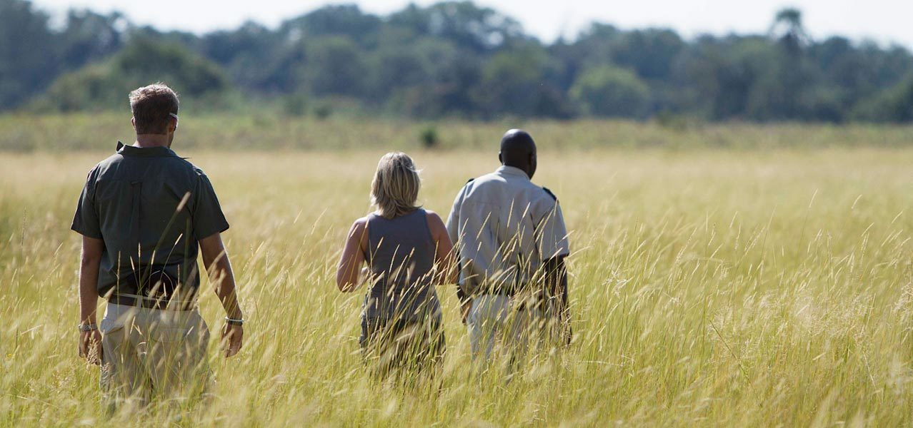Okavango Delta Moremi Safari Package