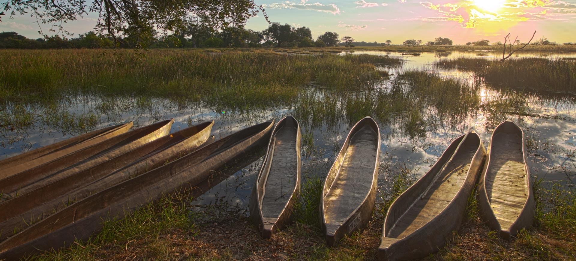 Pom Pom Okavango Delta