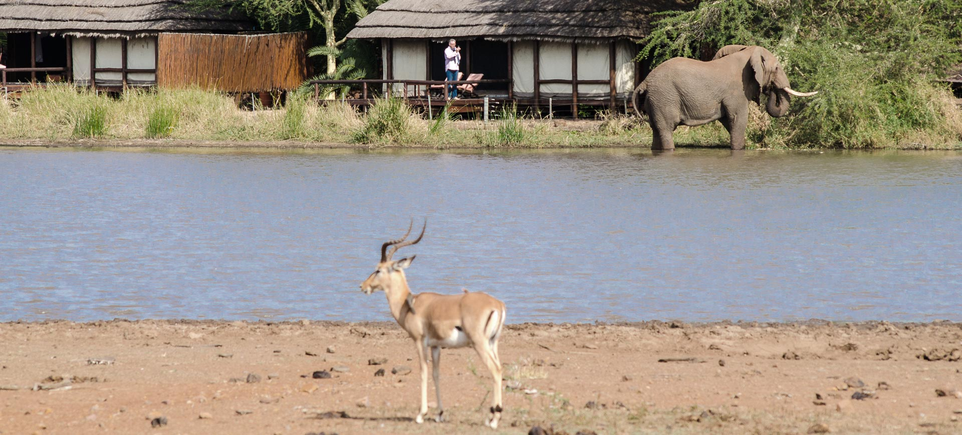 Camp Shawu Safari Lodge
