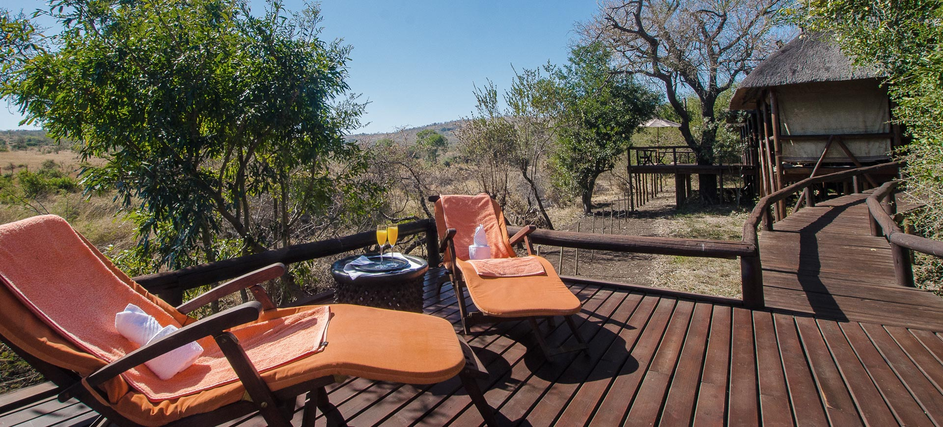 Camp Shonga In Kruger