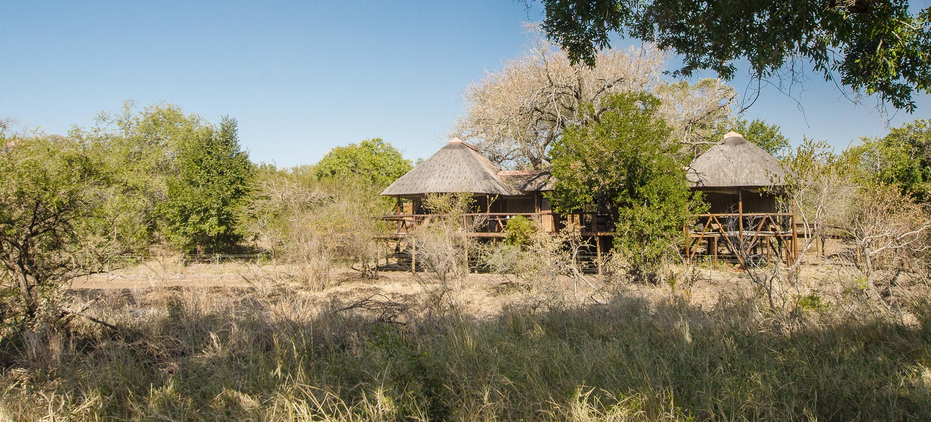Camp Shonga Kruger Safari
