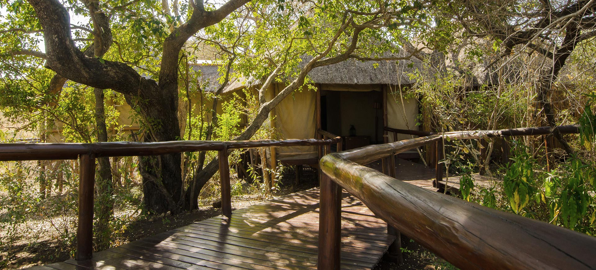Camp Shonga Lodge
