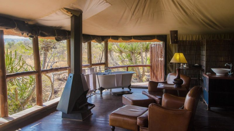 Camp Shonga Luxury Camp