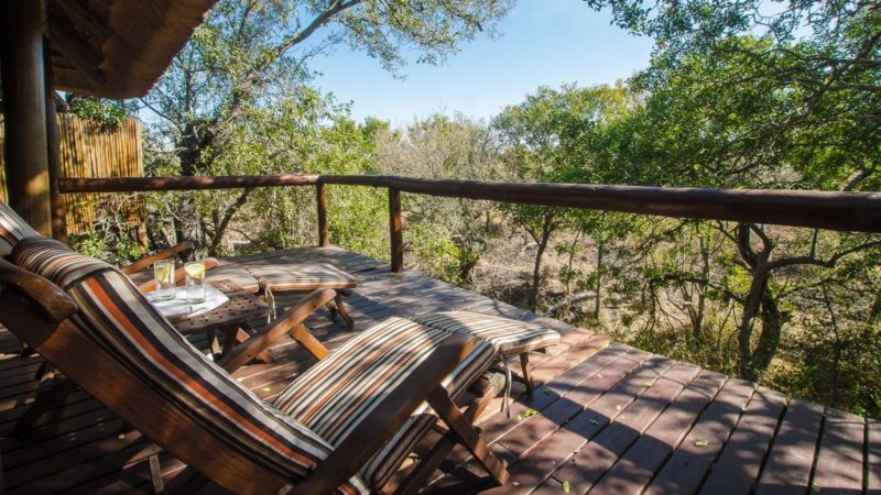 Camp Shonga Safari