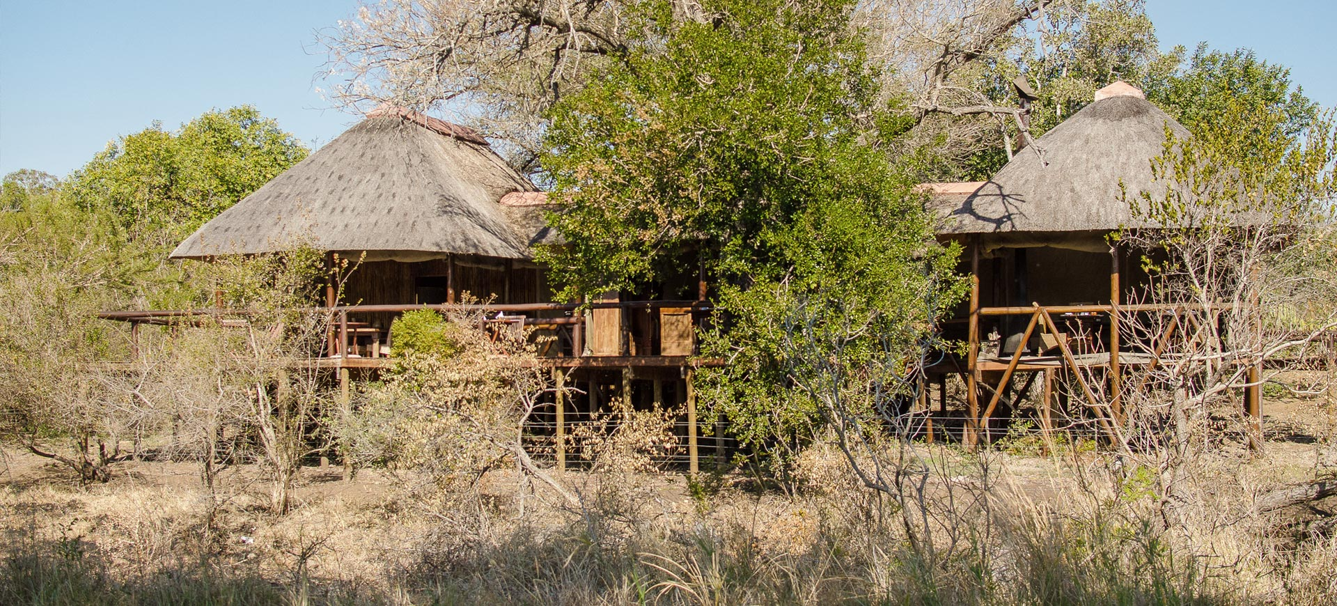 Camp Shonga Safari Lodge