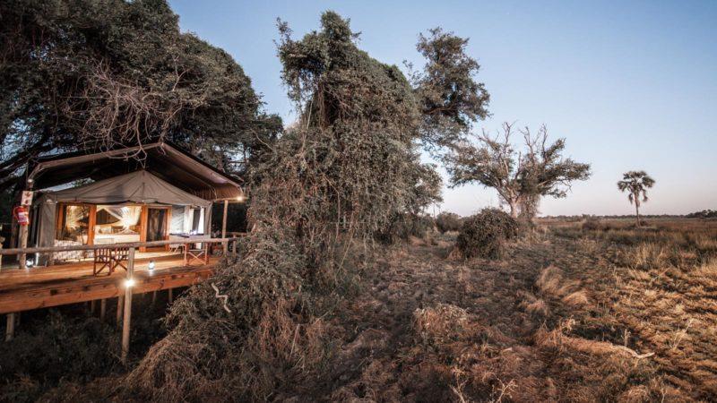 Rra Dinare In Okavango Delta