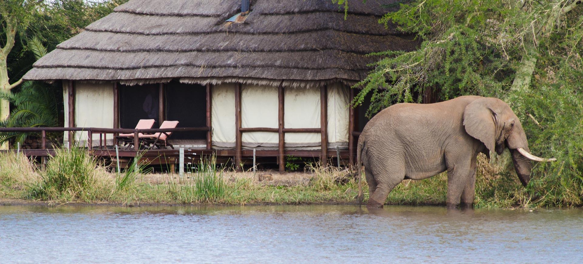 Shawu Camp Kruger