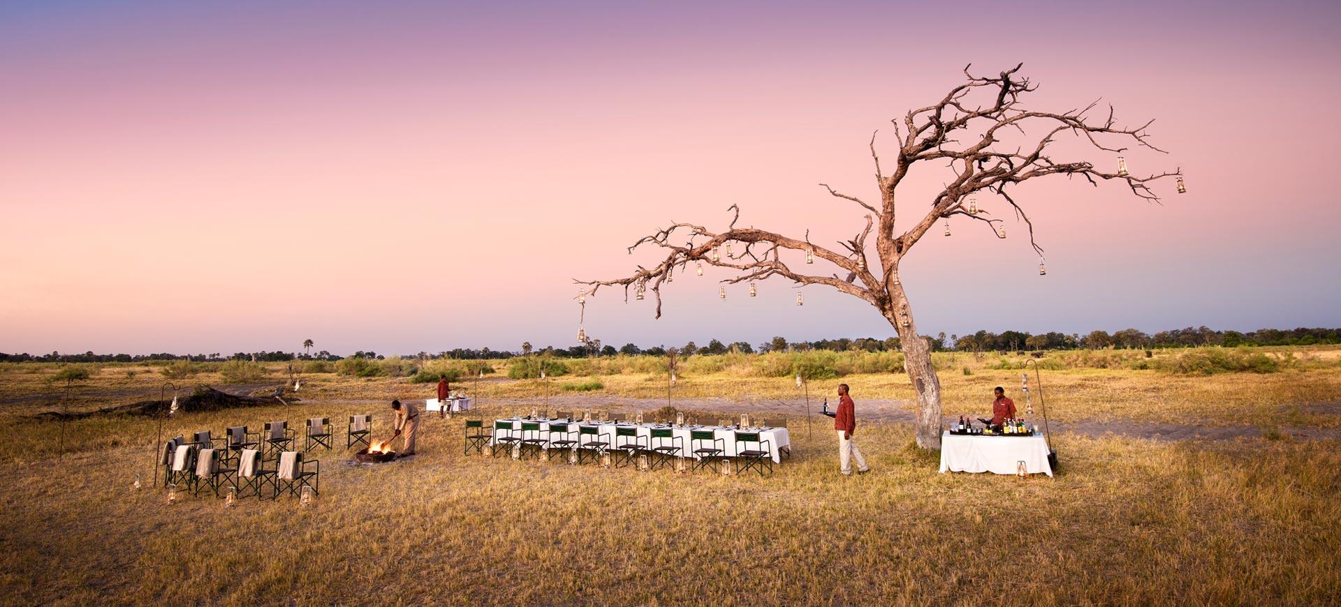 Africa Ecotourism Safaris