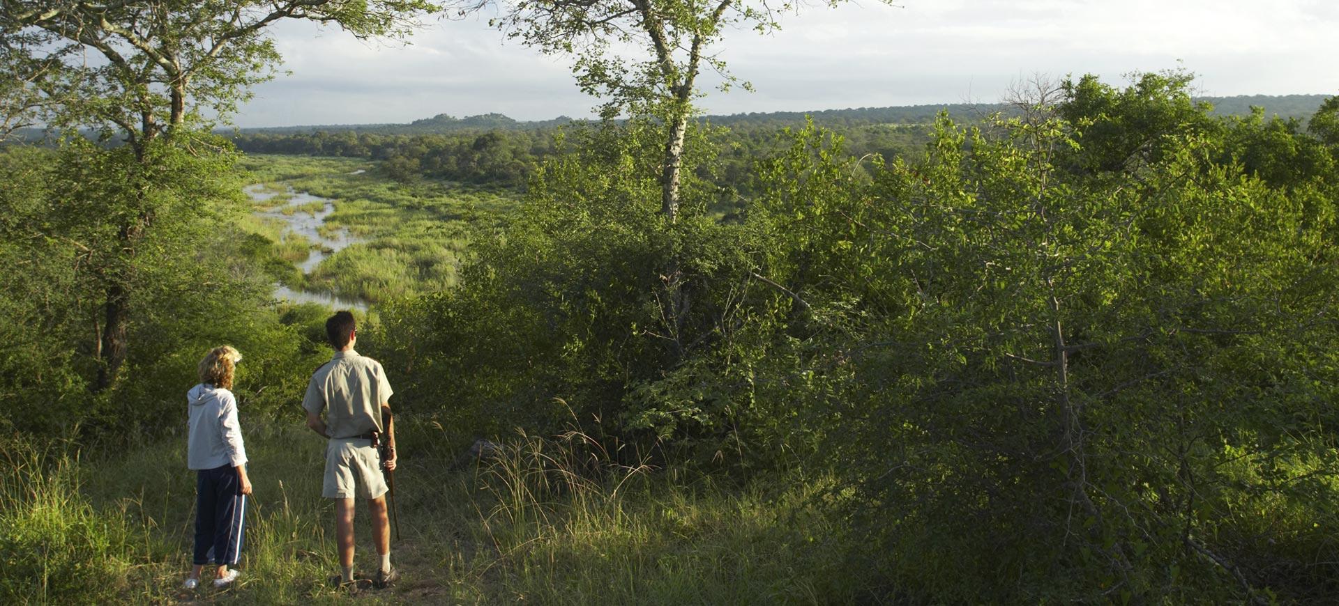 Guided Walk Kruger Park