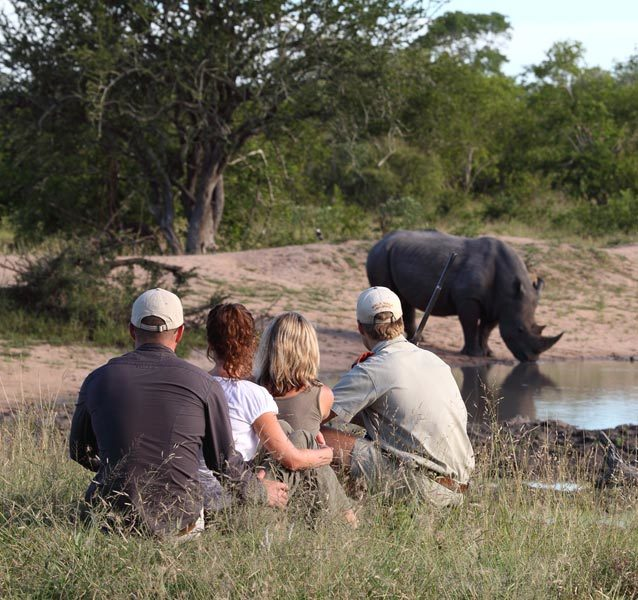 Kruger Guided Walking Safari