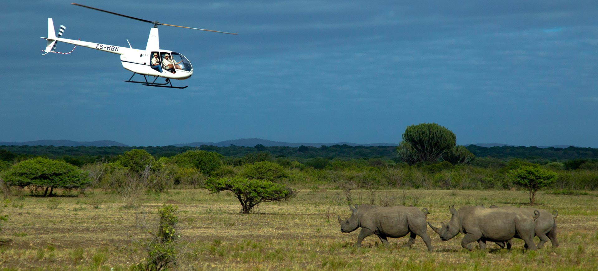 Rhino Notching Kruger