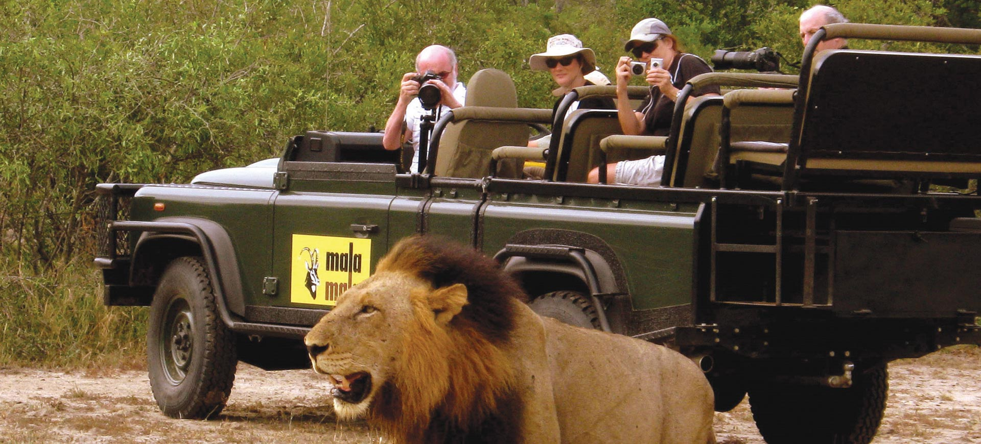 Safari Game Drive Kruger National Park