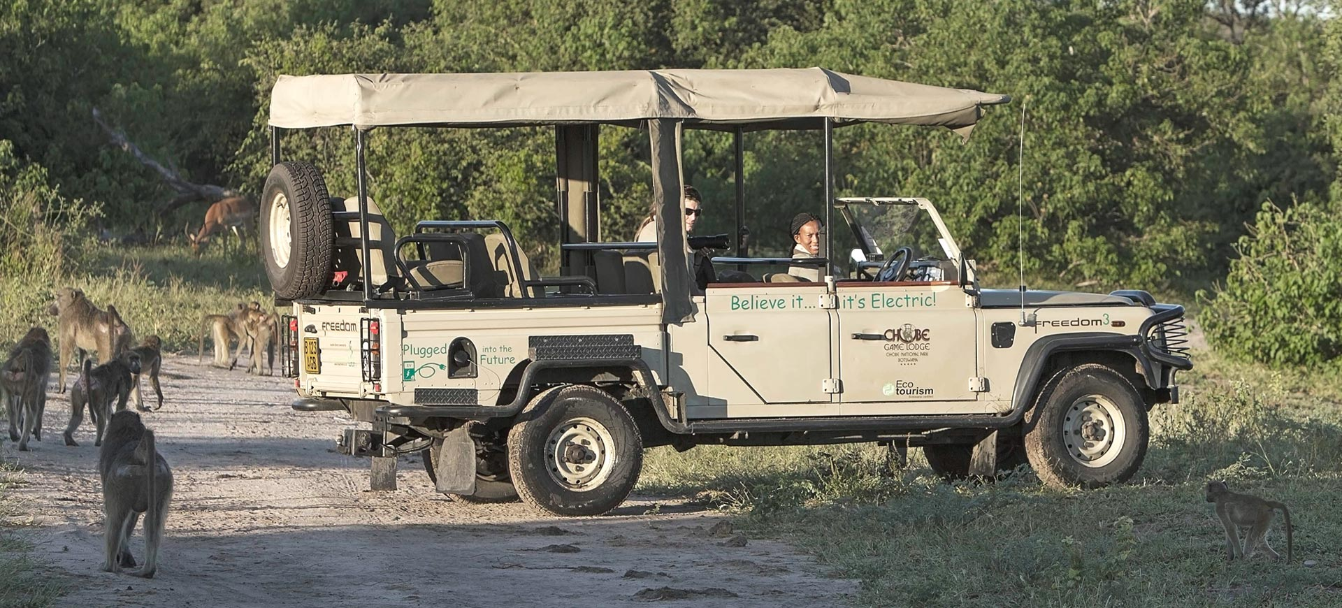 Electric Safari game Drive Vehicle