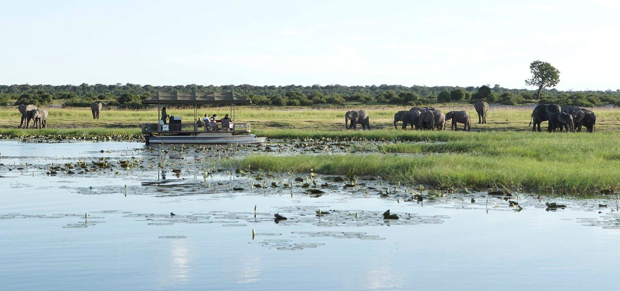 Chobe National Park Package